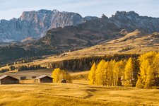 Header as seiser alm herbst