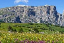 Primavera sull'Alpe di Siusi